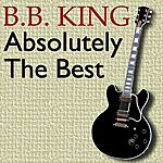 B.B. King Absolutely The Best
