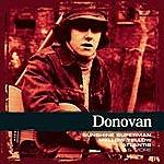 Donovan Collections