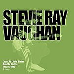 Stevie Ray Vaughan Collections