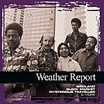 Weather Report Collections