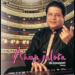 Anup Jalota In Concert Vol. 2 ( Live )