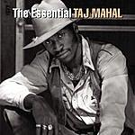 Taj Mahal The Essential