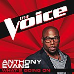 Anthony Evans What's Going On (The Voice Performance)
