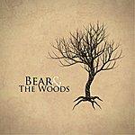 Bear Bear & The Woods
