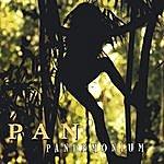 The Pan Pandemonium