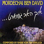 Mordechai Ben-David I Have Waited