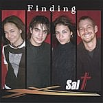 Sal-t Finding