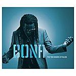 Richard Bona The Ten Shades Of Blues
