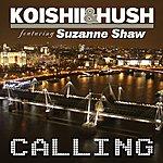 Koishii & Hush Calling (Feat. Suzanne Shaw)