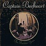 Captain Beefheart The Buddah Years