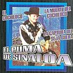 El Puma De Sinaloa El Cochiloco