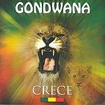 Gondwana Crece