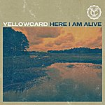 Yellowcard Here I Am Alive