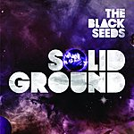 The Black Seeds Solid Ground