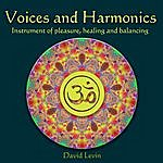 David Levin Voices And Harmonics Instrument Of Pleasure, Healing And Balancing