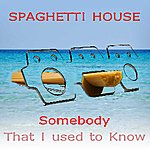 Spaghetti House Somebody That I Used To Know (House Version)