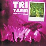 Tri Yann Tri Yann Trente Ans Au Zénith (Live)