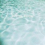 Birdmonster Motel Pool