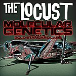 The Locust Molecular Genetics From The Gold Standard Labs