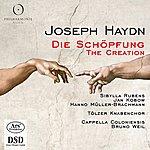 Bruno Weil Haydn: Die Schöpfung (The Creation)