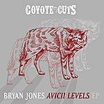 Bryan Jones Avicii Levels Ep