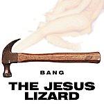 The Jesus Lizard Bang! (Singles Compilation)