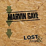 Marvin Gaye Lost & Found: Marvin Gaye