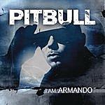Pitbull I Am Armando (Armando Reloaded)