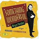 Bryn Terfel Bryn Terfel - Something Wonderful