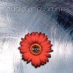 Audio Adrenaline Bloom