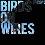 Apollo Birds On Wires