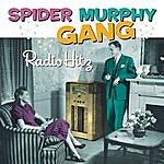 Spider Murphy Gang Radio Hitz