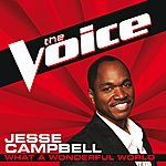 Jesse Campbell What A Wonderful World (The Voice Performance)