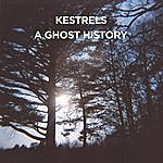 The Kestrels A Ghost History