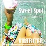 The Dream Team Sweet Spot (Feat. Jennifer Lopez Special Edition Tribute)