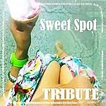 The Dream Team Sweet Spot (Feat. Jennifer Lopez Tribute)(Single)