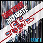 Todd Terry Todd Terry's Ultimate Rare Grooves (Part 1)