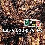Orchestra Baobab Naturel
