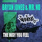 Bryan Jones The Way You Feel