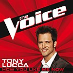Tony Lucca How You Like Me Now (The Voice Performance)