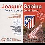 Joaquín Sabina Motivos De Un Sentimiento