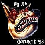 Big-E Snarling Dogs