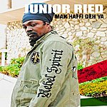 Junior Reid Man Haffi Deh Ya