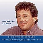 Wolfgang Ambros Nur Das Beste