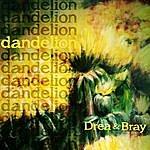 Drea Dandelion