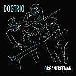 Dog Organ Freeman