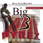 Big B Pyrex Visions