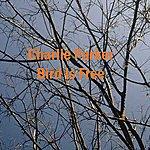 Charlie Parker Bird Is Free