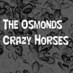 The Osmonds Crazy Horses