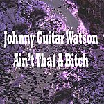 Johnny 'Guitar' Watson Ain't That A Bitch
